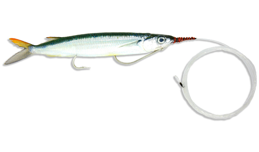 Medium double hook ballyhoo mono leader baitmasters of for Saltwater fishing leader