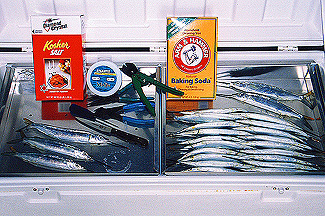 Baitmasters Rigging Tips - Baitmasters of South Florida